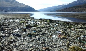 Litter at the Head of Loch Long