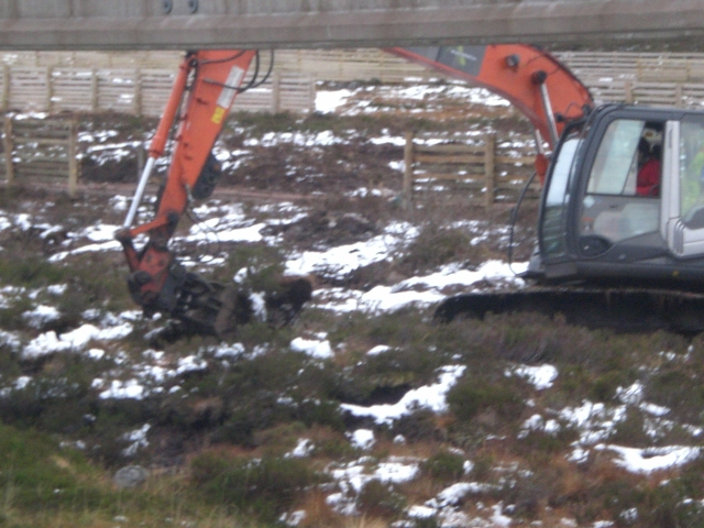 GP Ripping out vegetation (2)